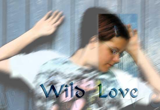 wild-love_6422poster